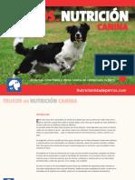 Trucos NutriciónJunio2014.pdf