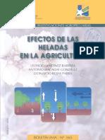 Efectos de Las Heladas en Hortalizas