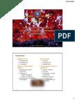 4. Las Rocas Ígneas y La Actividad Ígnea Intrusiva (Plutonismo).Pptx