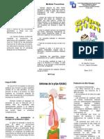 Triptico de Gripe H1N1