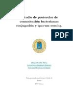 Estudio de Protocolos