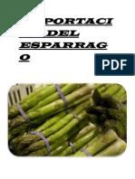 Exportación Del Esparrago