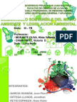 Desarrollosostenibledelmedioambienteylegislacinambiental Exponer 111030163601 Phpapp02
