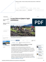 sector agro.pdf