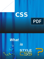 Css Beginers New
