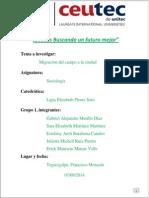 ProyectoFinal_Migracionj