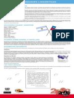 Panel Sobre Curiosidades Linguisticas Web