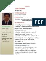 CURRICULUM DE wilver garcia.docx