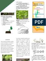 Triptico-Vivero2.docx