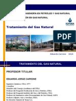 1 TGN 2014 Introducción .pdf