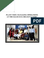 Igloo Plant Report FINAL VERSION