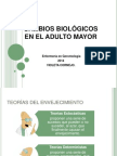 Cambios Biologicos Adulto Mayor