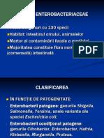 Familia Enterobacteriaceae 2
