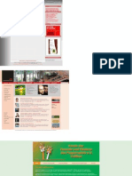 Theater-Homepages, Typ 1