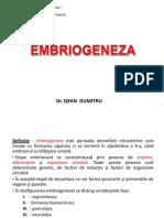 C1.Embriogeneza