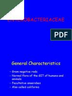 Enterobactericea