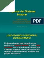 2 Organos Sistema Inmune