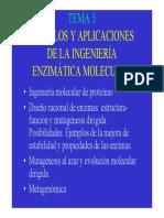 Tema 5 Ingenieria Molecular Enzimas