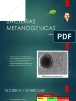 Bacterias Metanogenicas