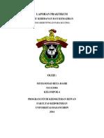 Laporan Praktikum Usg Kebuntingan Muhammad_reza_basri