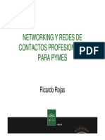 Networking y Redes Sociales Pymes