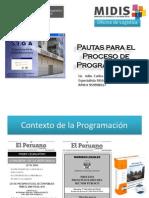 Pautas Para El Proceso de Programación SIGA-MEF