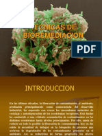biorremediaciondesuelosaguayaire-111107201914-phpapp02