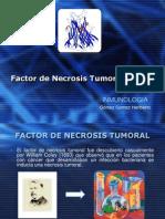 Factor de Necrosis Tumoral (TNF)