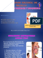 Infecciones Respiratorias Aguda (Ira)