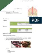 Anatomia y Fisio Clinica II Perros