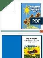 E-book on sunflower