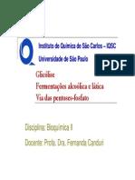 Glicolise bioquimica