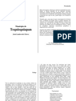 Cronica Del Municipio de Tequisquiapanpdf