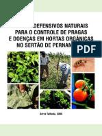 Uso de Defensivos Naturais Em Hortas Orgânicas