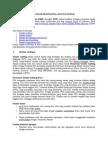 Standar Profesional Akuntan Publik (2)