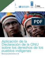 Aplicación de la  Declaración de la ONU sobre los Derechos de los Pueblos Indígenas