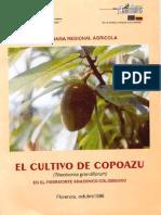 Cultivo de Copoazu