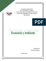 Economia y Ambiente.docx