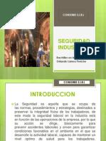 Seguridad Industrial.exposicion