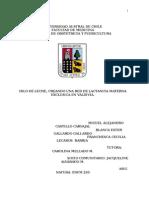 Revision Preinforme trabajo de comunitario.doc