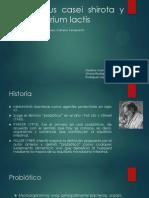 Lactobacillus Casei Shirota (1) (1)
