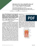 Baip2010 Paper