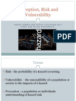 Perception Risk Vulnerability