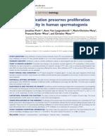 Vitrification preserves SSCs, Wyns 2013.pdf