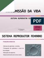 3.Sistema Reprodutor Feminino