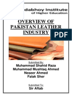 Overview of Pakistani Leather Industry ( PDF ).pdf