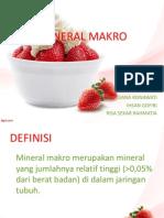 Mineral Makro Ppt Fix