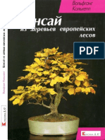Бонсай Из Деревьев Европейских Лесов