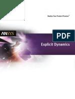 Explicit Dynamics Solutions 14.0