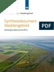 Synthesedocument Waddengebied. Achtergronddocument B10.